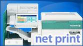 net_15.jpg